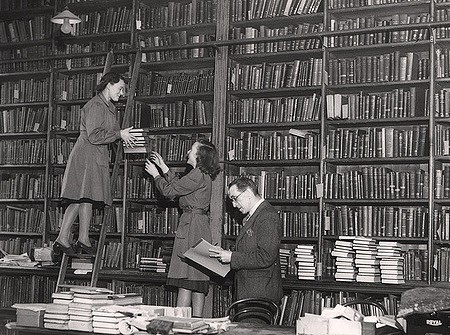 photo from Newcastl Library of women shelving books, one on a laddeer